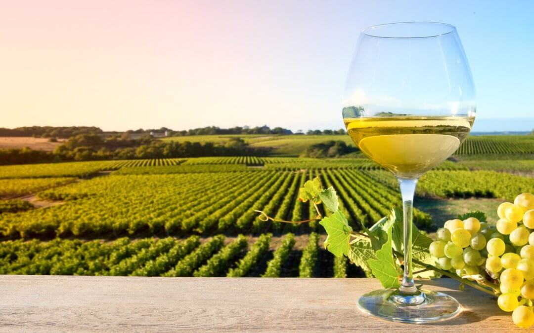 La route vins de Sancerre à Pouilly-sur-Loire